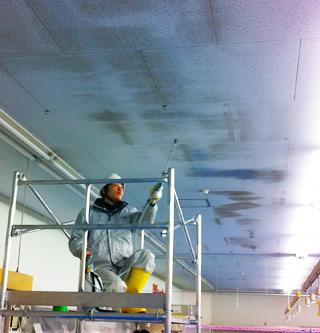 スーパーの天井カビ除去作業